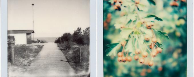 Polaroids aus Boltenhagen