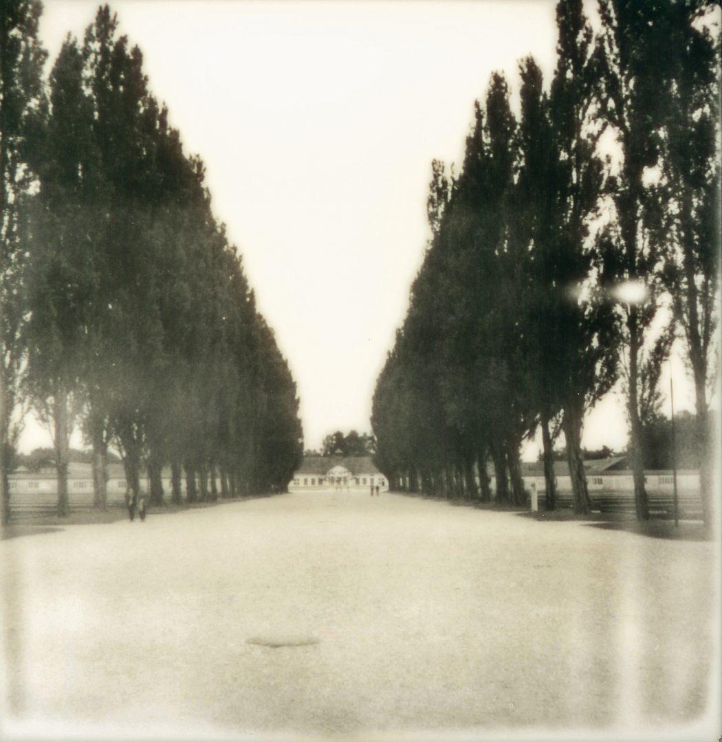 KZ Gedenkstätte Dachau: Lagerstraße